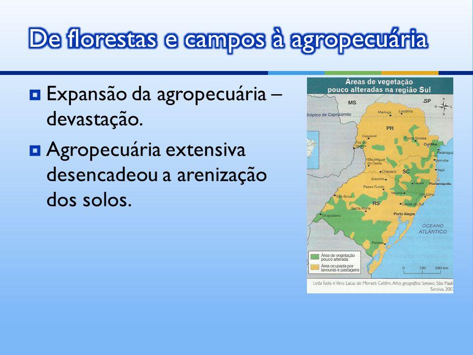  Expansão da agropecuária – devastação.  Agropecuária extensiva desencadeou a arenização dos solos.