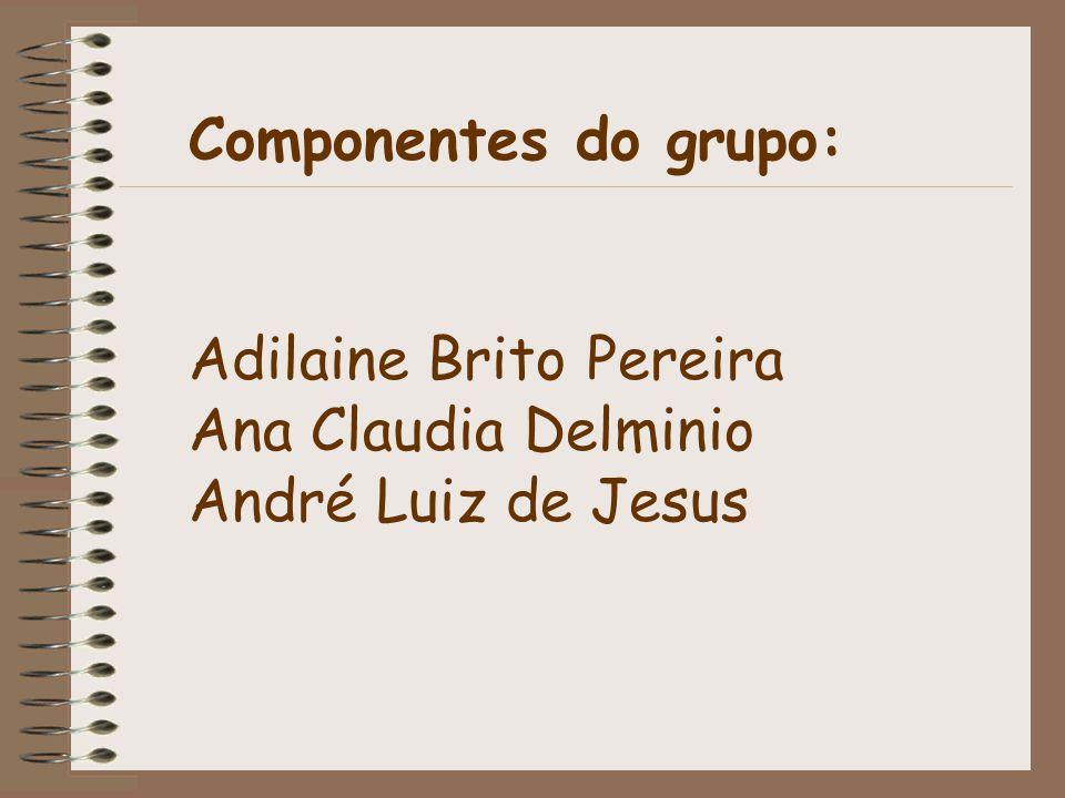 Componentes do grupo: Adilaine Brito Pereira Ana Claudia Delminio André Luiz de Jesus