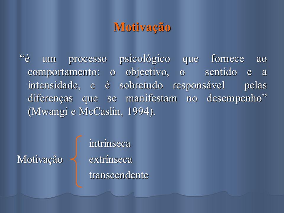 Motivação é um processo psicológico que fornece ao comportamento: o objectivo, o sentido e a intensidade, e é sobretudo responsável pelas diferenças que se manifestam no desempenho (Mwangi e McCaslin, 1994).