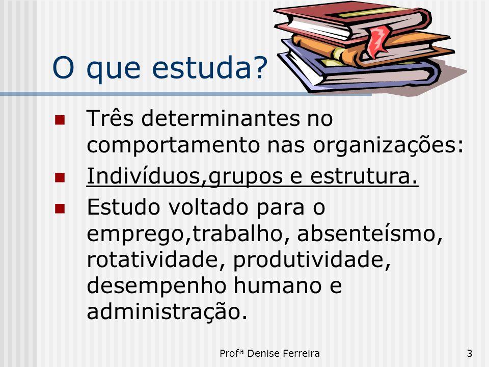 Profª Denise Ferreira3 O que estuda?  Três determinantes no comportamento nas organizações:  Indivíduos,grupos e estrutura.  Estudo voltado para o
