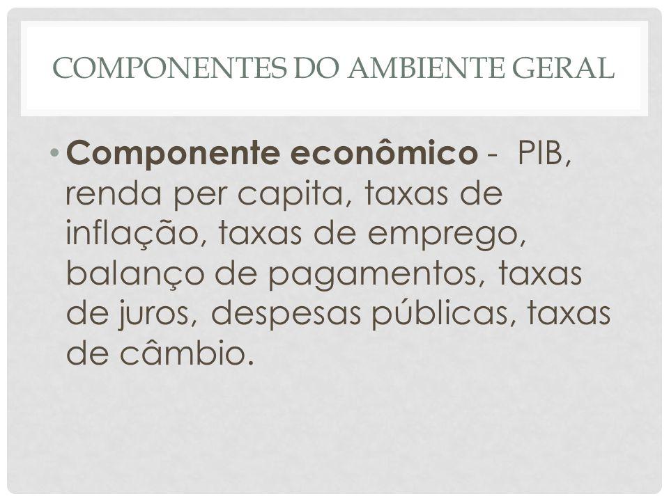 COMPONENTES DO AMBIENTE GERAL • Componente econômico - PIB, renda per capita, taxas de inflação, taxas de emprego, balanço de pagamentos, taxas de jur