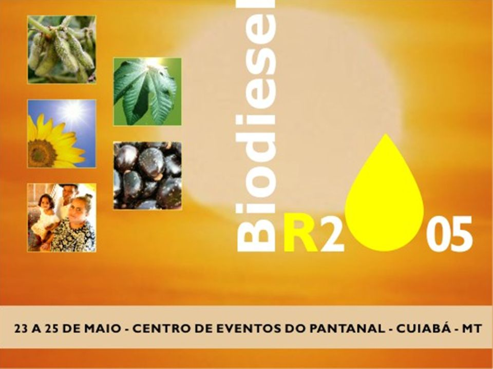 Contatos: Prof.Dr. Evandro Luiz Dall'Oglio – eldo13@terra.com.breldo13@terra.com.br Prof.