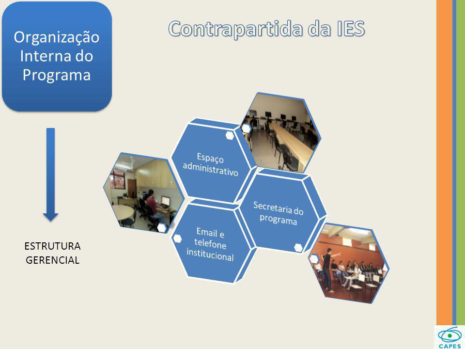 Organização Interna do Programa ESTRUTURA GERENCIAL