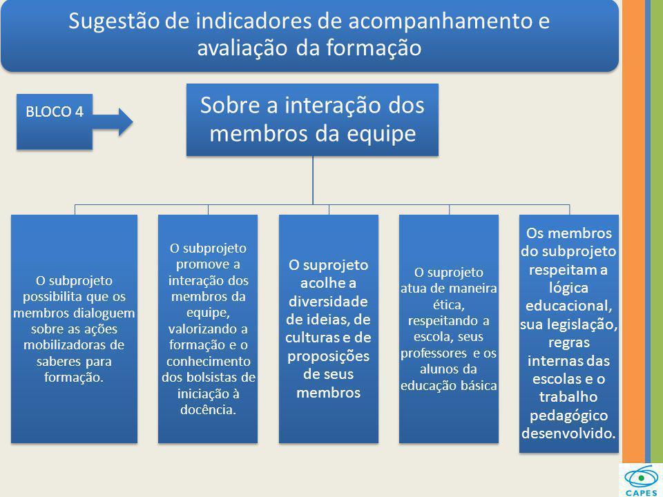 Sugestão de indicadores de acompanhamento e avaliação da formação Sobre a interação dos membros da equipe O subprojeto possibilita que os membros dial