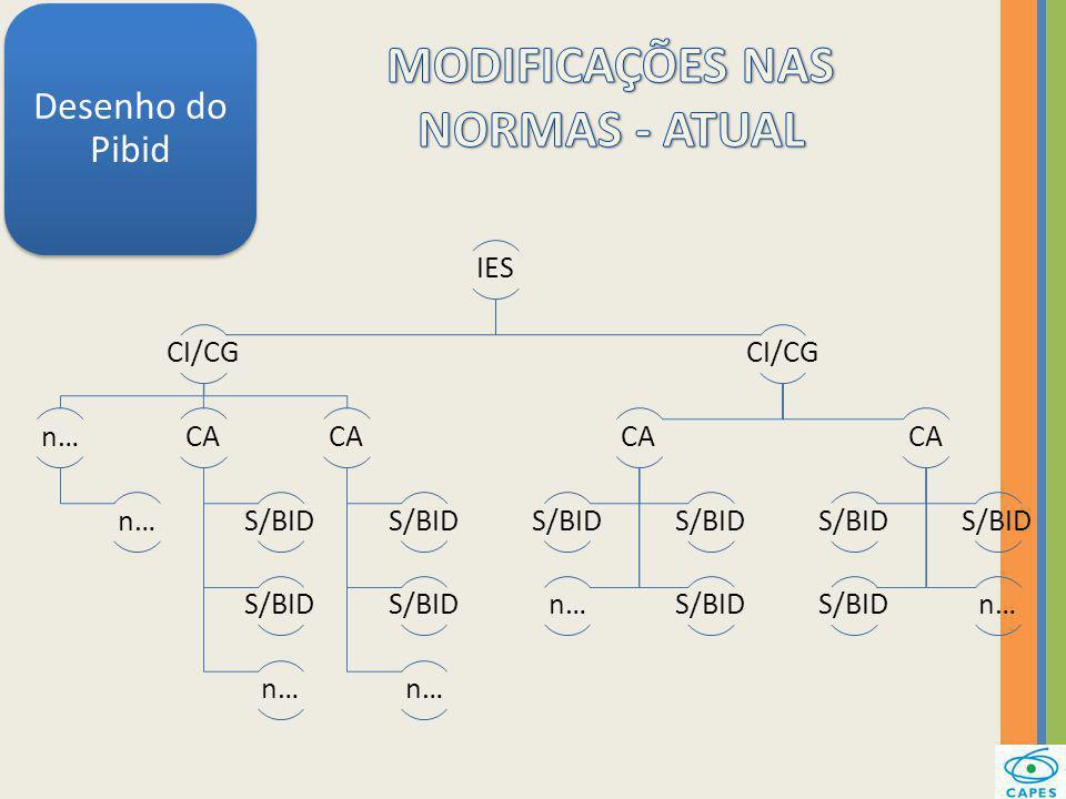 Desenho do Pibid IES CI/CG n… CA S/BID n… CA S/BID n… CI/CG CA S/BID n…S/BID CA S/BID n…
