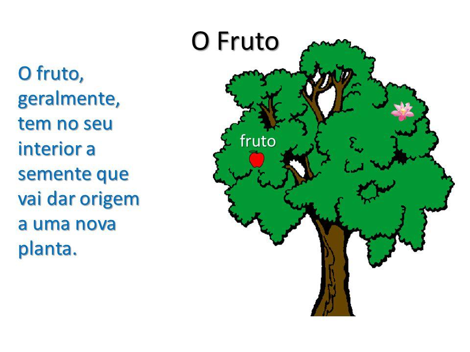 O Fruto O fruto, geralmente, tem no seu interior a semente que vai dar origem a uma nova planta. fruto