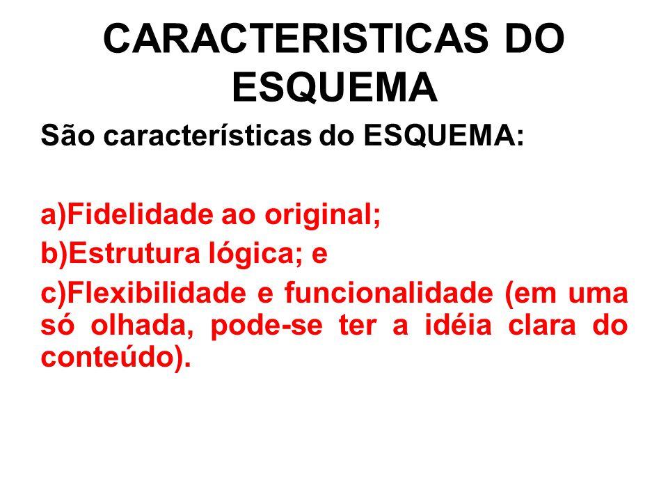 CARACTERISTICAS DO ESQUEMA São características do ESQUEMA: a)Fidelidade ao original; b)Estrutura lógica; e c)Flexibilidade e funcionalidade (em uma só