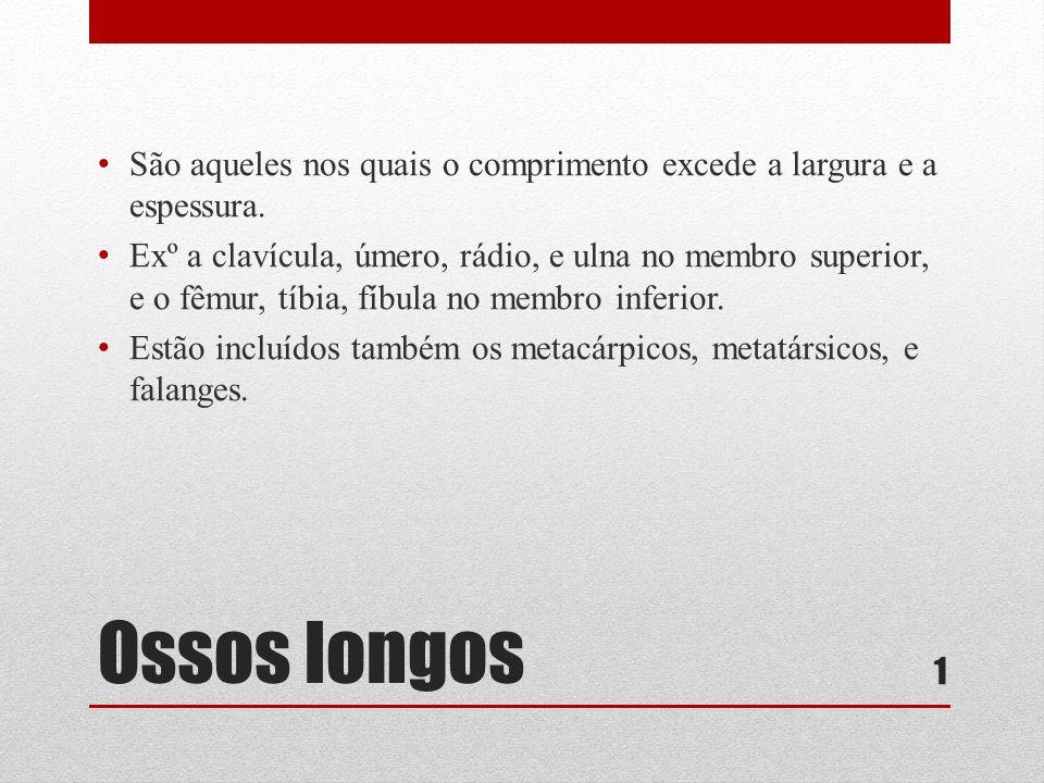 Ossos longos • São aqueles nos quais o comprimento excede a largura e a espessura.