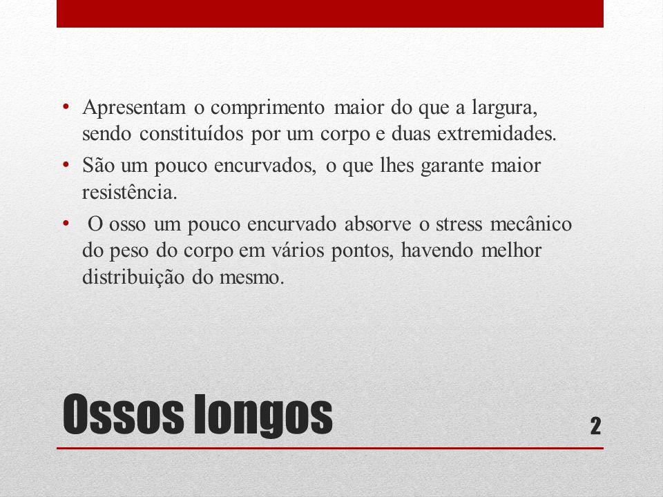 Ossos longos • Apresentam o comprimento maior do que a largura, sendo constituídos por um corpo e duas extremidades.