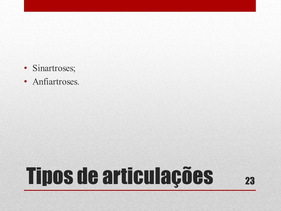 Tipos de articulações • Sinartroses; • Anfiartroses. 23