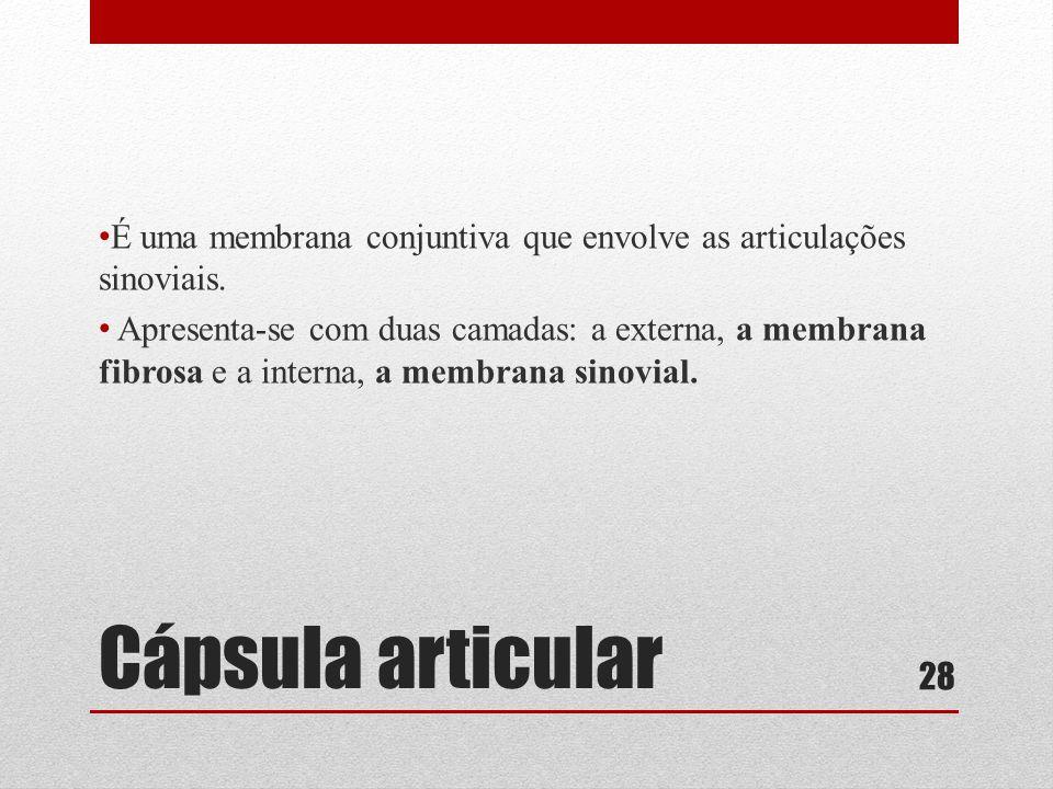 Cápsula articular • É uma membrana conjuntiva que envolve as articulações sinoviais.