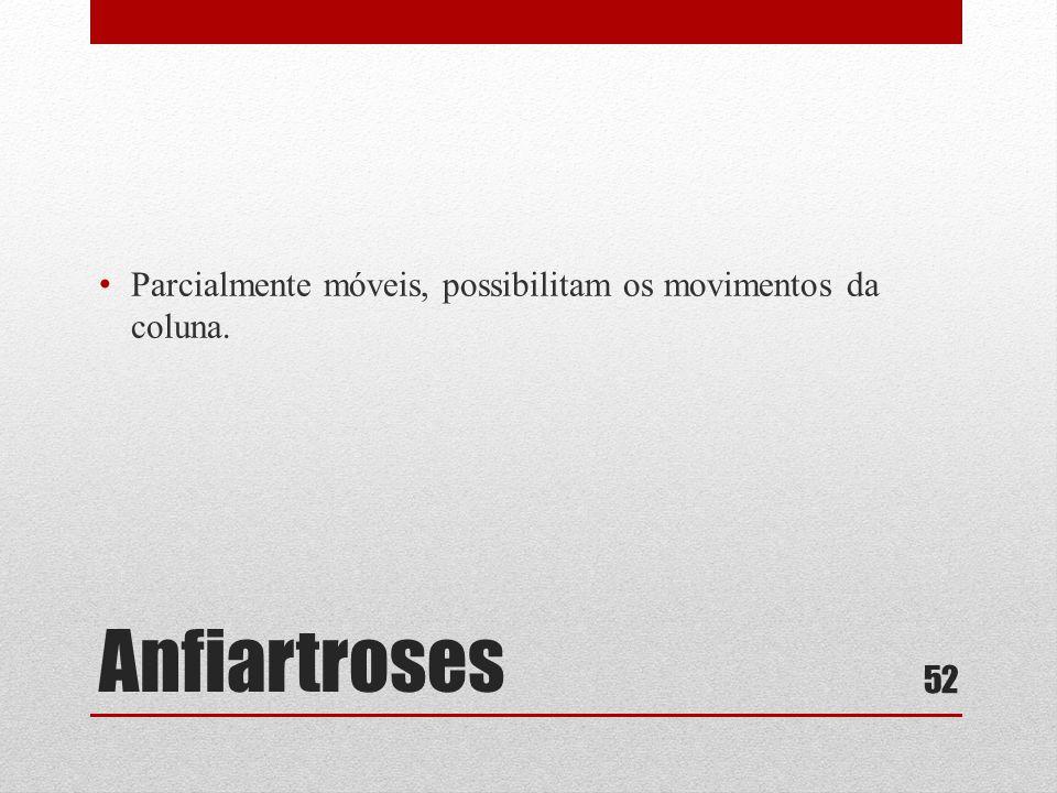 Anfiartroses • Parcialmente móveis, possibilitam os movimentos da coluna. 52