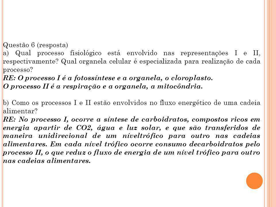 Questão 6 (resposta) a) Qual processo fisiológico está envolvido nas representações I e II, respectivamente? Qual organela celular é especializada par