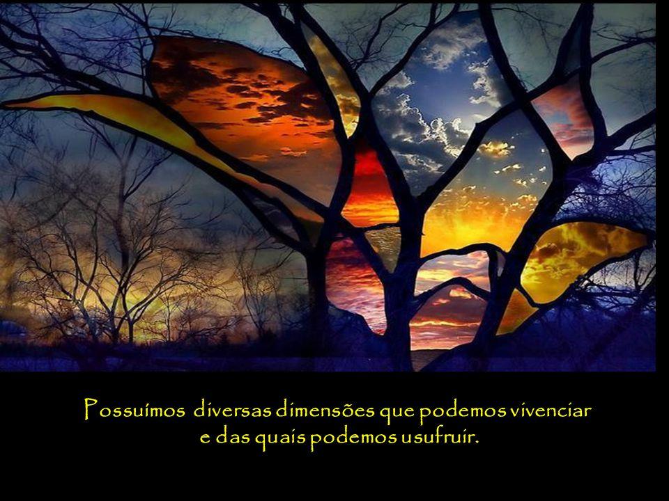 Acredito que não somos somente humanos, nem mesmo seres humanos que eventualmente desfrutam de experiência espirituais, mas seres espirituais que têm