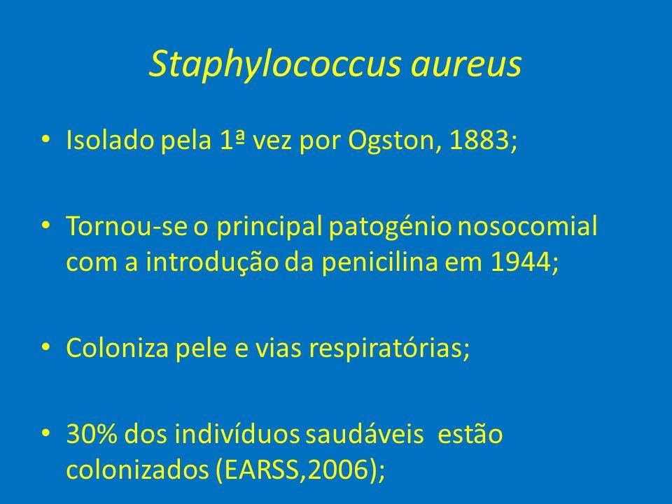 Staphylococcus aureus • Isolado pela 1ª vez por Ogston, 1883; • Tornou-se o principal patogénio nosocomial com a introdução da penicilina em 1944; • C