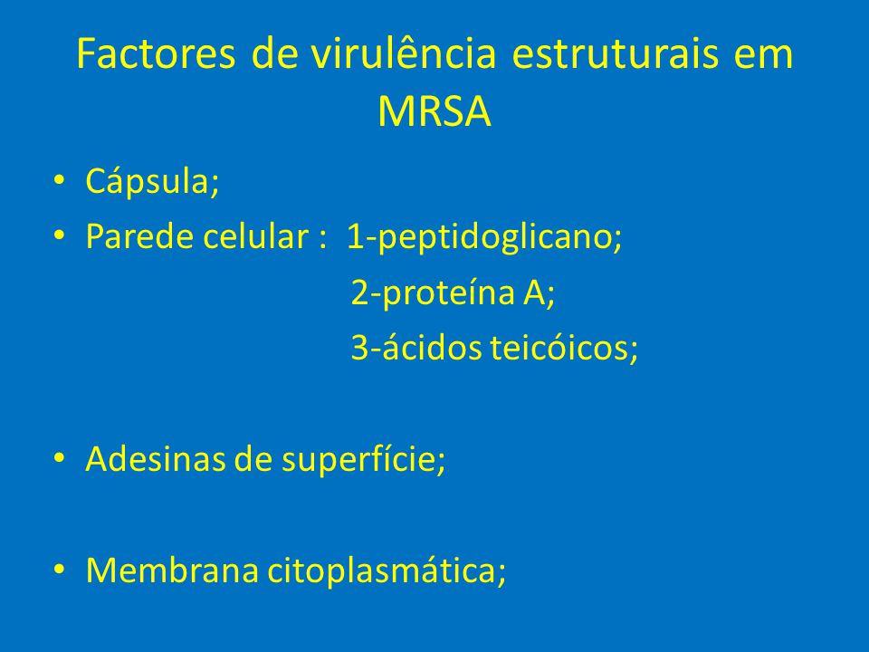 Factores de virulência extracelulares em MRSA • Toxinas: 1-hemolisinas (alfa, beta e gama); 2-leucocidina Panton-Valentine 3-esfoliativas A e B 4-enterotoxinas A-E 5-TSST-1 • Enzimas: 1- coagulase 2- catalase 3- hialuronidase 4- fibrinolisina 5- DNAase 6- lipases 7- penicilinases