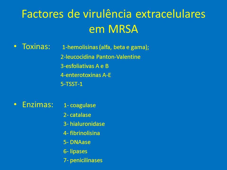 Factores de virulência extracelulares em MRSA • Toxinas: 1-hemolisinas (alfa, beta e gama); 2-leucocidina Panton-Valentine 3-esfoliativas A e B 4-ente