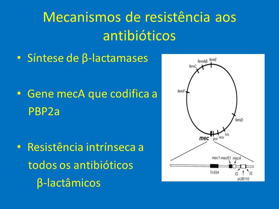 Mecanismos de resistência aos antibióticos • Síntese de β-lactamases • Gene mecA que codifica a PBP2a • Resistência intrínseca a todos os antibióticos
