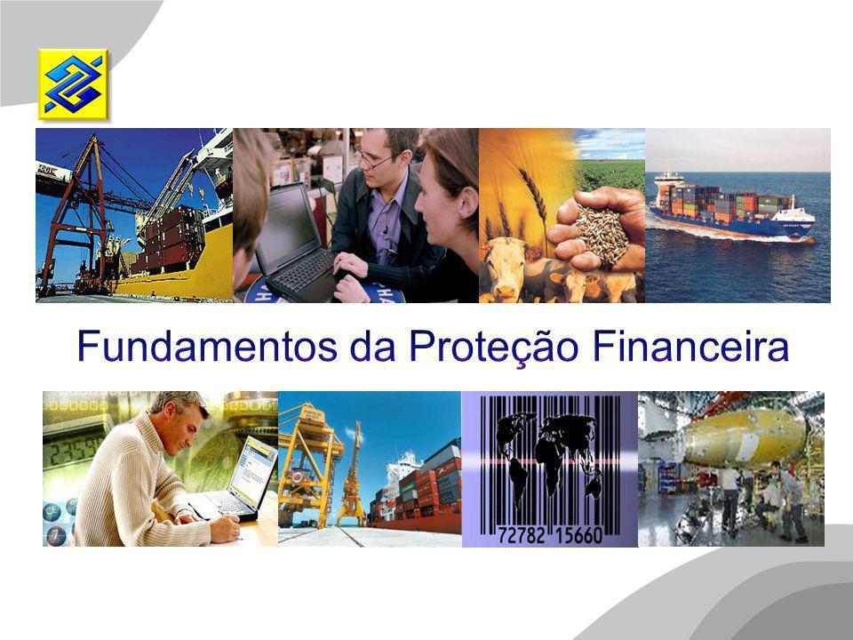Objetivos  Alertar para o risco de mercado no comércio exterior, associado às variações da taxa de câmbio  Apresentar o conceito de operações de proteção  Apresentar os principais instrumentos utilizados nas operações de proteção