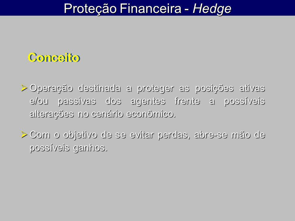 Proteção Financeira - Hedge  Operação destinada a proteger as posições ativas e/ou passivas dos agentes frente a possíveis alterações no cenário econômico.