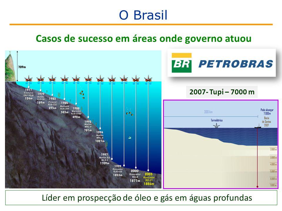 Líder em prospecção de óleo e gás em águas profundas 2007- Tupi – 7000 m Casos de sucesso em áreas onde governo atuou O Brasil