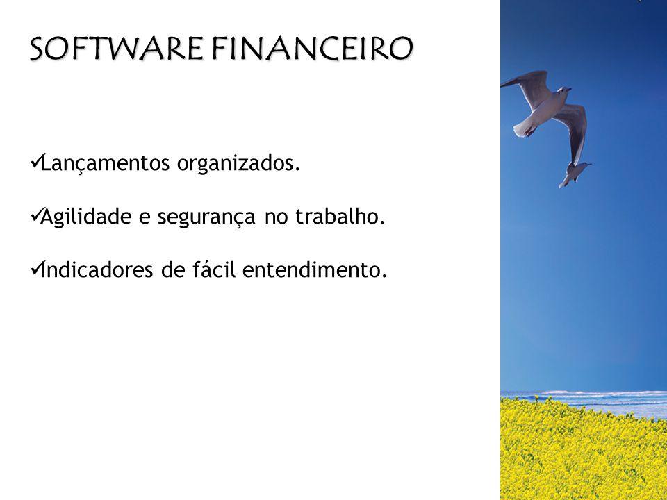 SOFTWARE FINANCEIRO  Lançamentos organizados.  Agilidade e segurança no trabalho.  Indicadores de fácil entendimento.