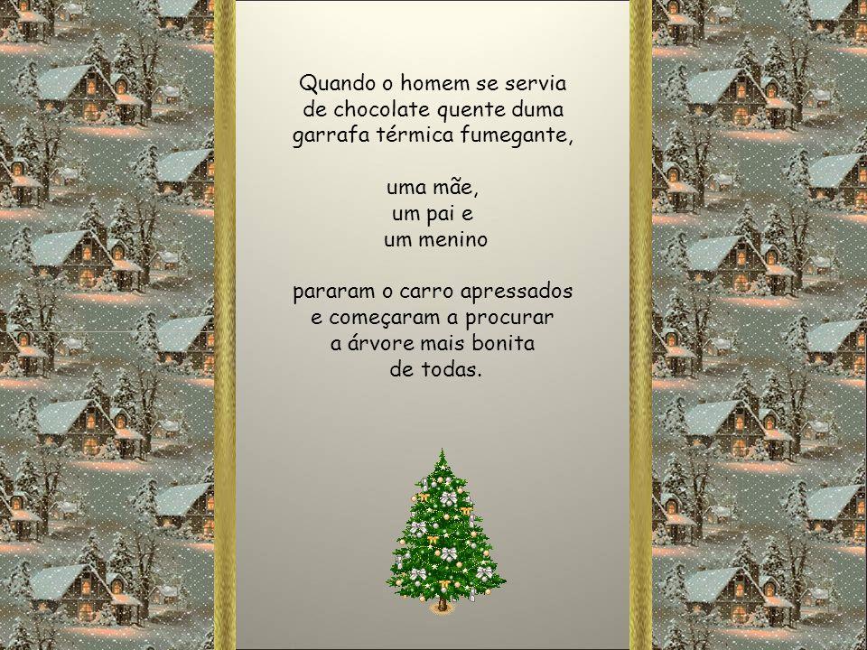 Vi um caminhão cheio de árvores de Natal e cada uma tinha uma história para contar. O motorista, colocou-as em fila e ficou à espera que as pessoas as