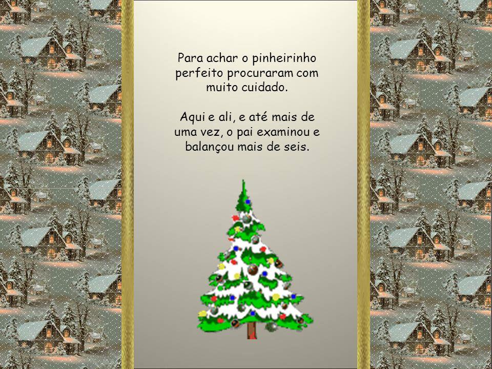 Uma árvore que chegue ao teto e nem dê para carregar. Uma árvore tão grande que até mesmo o Papai Noel, quando olhar, se admire e diga: Esta é a árvor