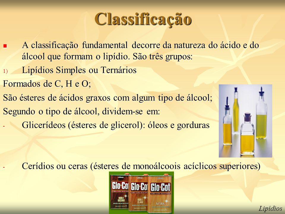 Classificação  A classificação fundamental decorre da natureza do ácido e do álcool que formam o lipídio. São três grupos: 1) Lipídios Simples ou Ter