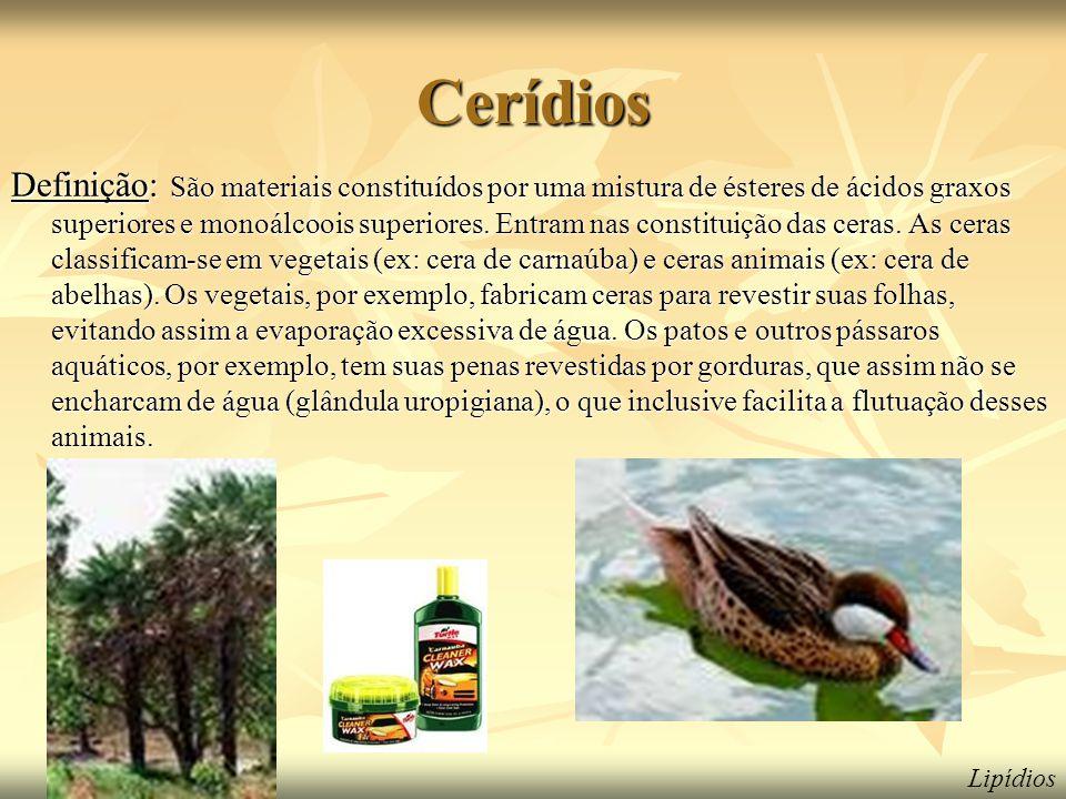 Cerídios Definição: São materiais constituídos por uma mistura de ésteres de ácidos graxos superiores e monoálcoois superiores. Entram nas constituiçã