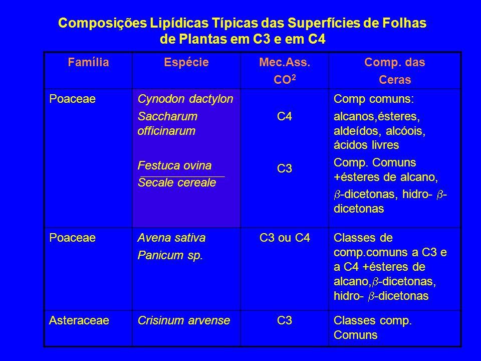 Composições Lipídicas Típicas das Superfícies de Folhas de Plantas em C3 e em C4 FamíliaEspécieMec.Ass. CO 2 Comp. das Ceras PoaceaeCynodon dactylon S