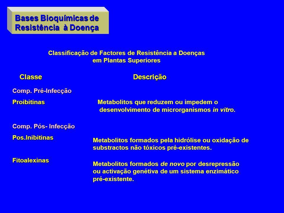 Bases Bioquímicas de Resistência à Doença Classificação de Factores de Resistência a Doenças em Plantas Superiores ClasseDescrição Comp. Pré-Infecção