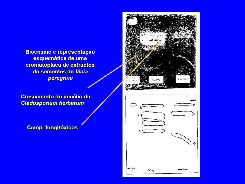 Bioensaio e representação esquemática de uma cromatoplaca de extractos de sementes de Vicia peregrina Crescimento do micélio de Cladosporium herbarum