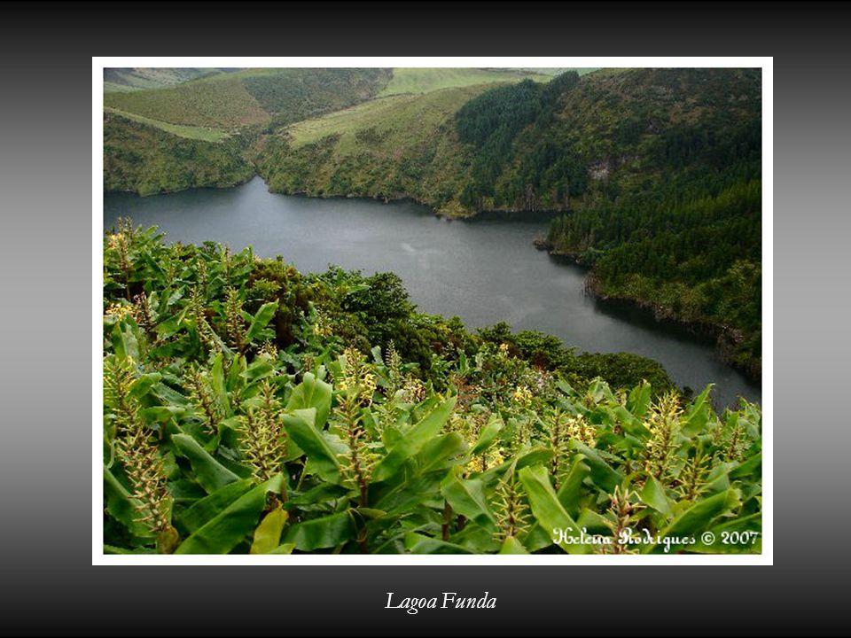 Vieni Ilha das Flores e scopri questo paradiso nell' Atlantico! Helena Rodrigues - Açores 2007