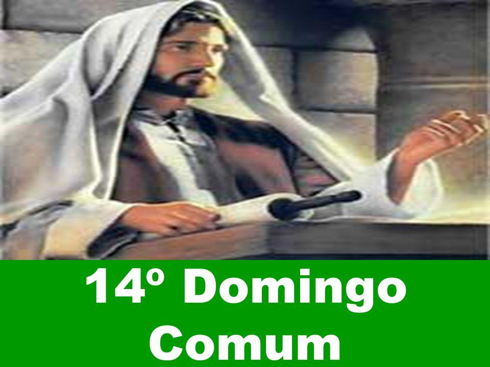 14º Domingo Comum