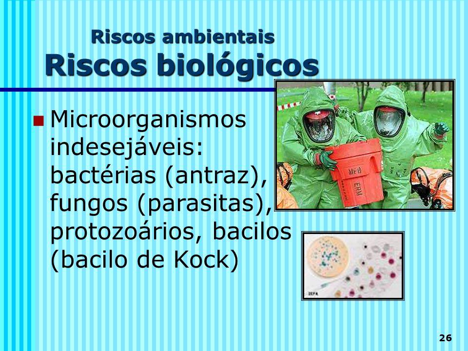 26 Riscos ambientais Riscos biológicos  Microorganismos indesejáveis: bactérias (antraz), fungos (parasitas), protozoários, bacilos (bacilo de Kock)