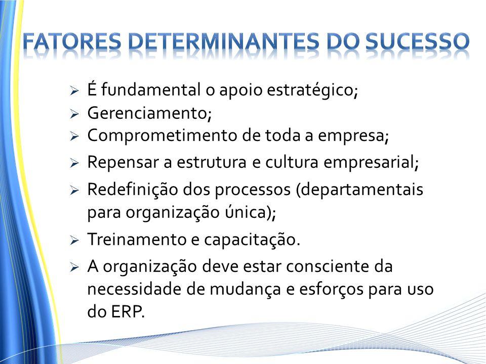  É fundamental o apoio estratégico;  Gerenciamento;  Comprometimento de toda a empresa;  Repensar a estrutura e cultura empresarial;  Redefinição dos processos (departamentais para organização única);  Treinamento e capacitação.