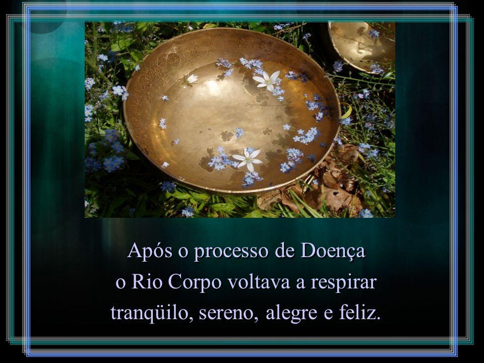 Quanto mais matéria prima de Sentimento Denso era utilizada na produção do produto Pensamento, mais poluído o Rio ficava e mais grave era a Doença com