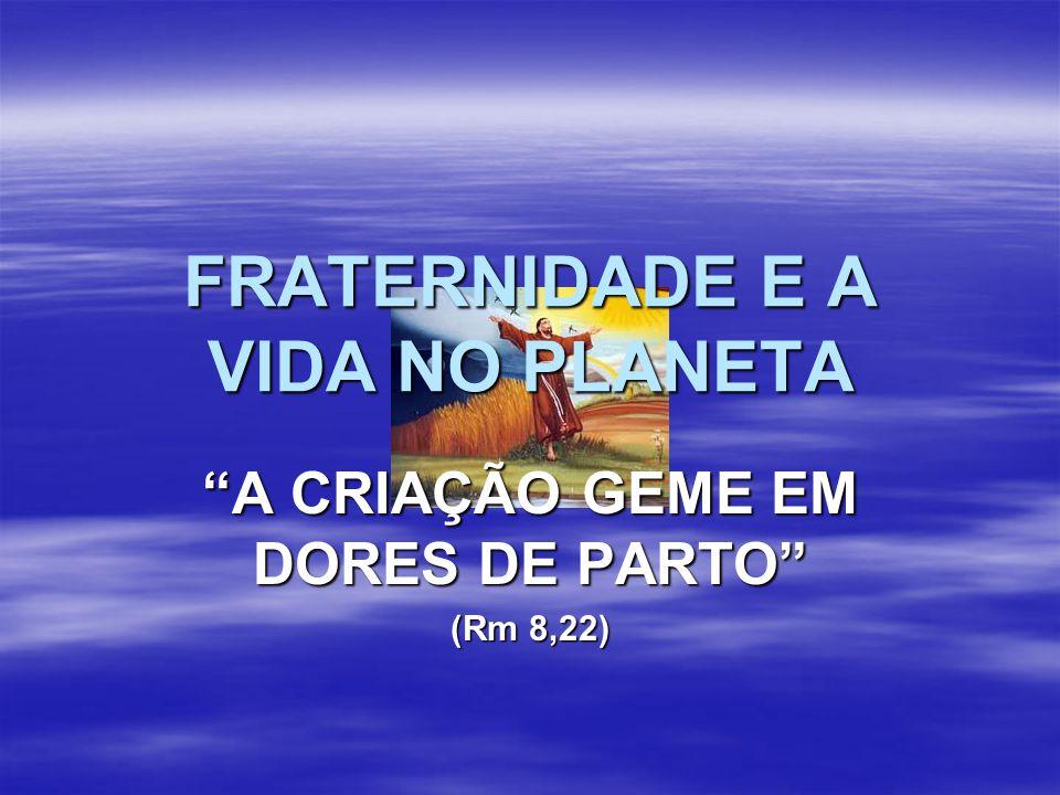 """FRATERNIDADE E A VIDA NO PLANETA """"A CRIAÇÃO GEME EM DORES DE PARTO"""" (Rm 8,22)"""