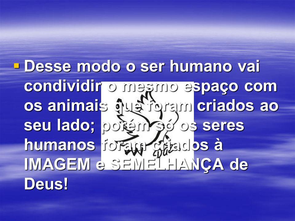  Desse modo o ser humano vai condividir o mesmo espaço com os animais que foram criados ao seu lado; porém só os seres humanos foram criados à IMAGEM