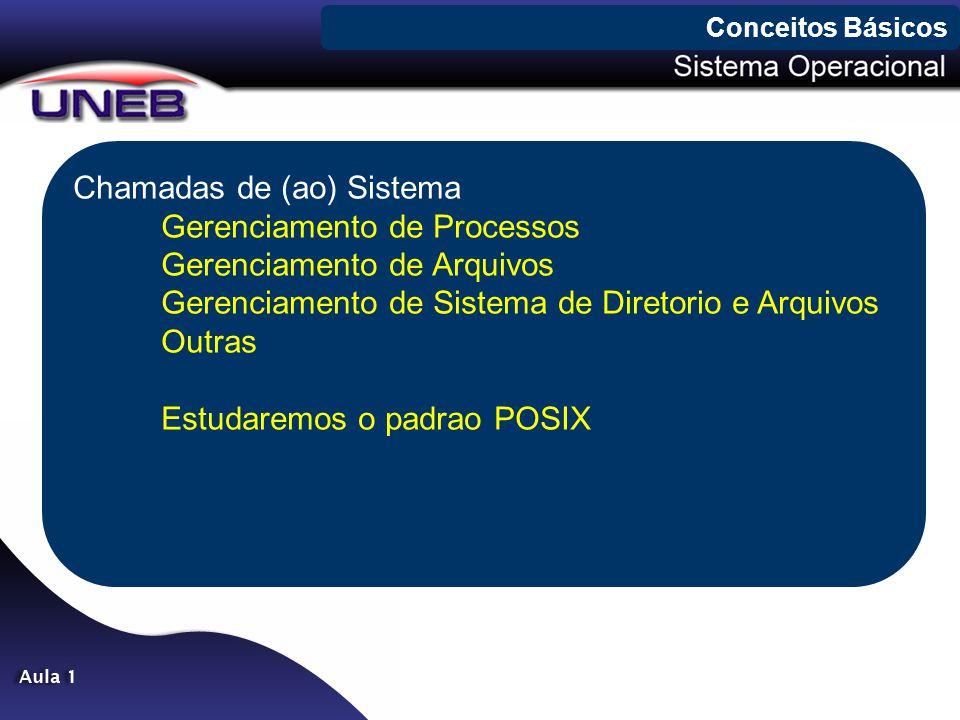 Chamadas de (ao) Sistema Gerenciamento de Processos Gerenciamento de Arquivos Gerenciamento de Sistema de Diretorio e Arquivos Outras Estudaremos o padrao POSIX Conceitos Básicos