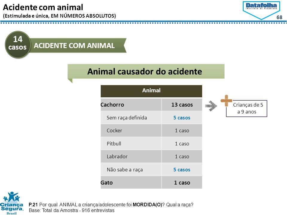 68 Acidente com animal (Estimulada e única, EM NÚMEROS ABSOLUTOS) 14 casos ACIDENTE COM ANIMAL P.21 Por qual ANIMAL a criança/adolescente foi MORDIDA(O).