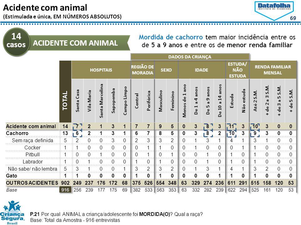 69 Acidente com animal (Estimulada e única, EM NÚMEROS ABSOLUTOS) P.21 Por qual ANIMAL a criança/adolescente foi MORDIDA(O).