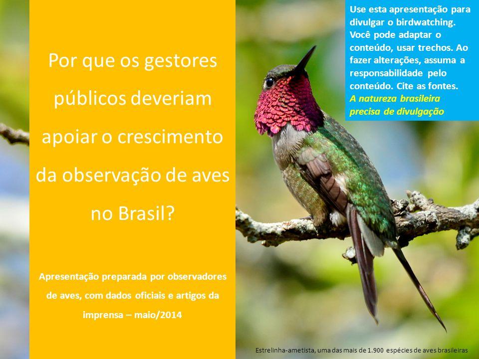 A observação de aves é reconhecida pela ONU como uma prática de turismo sustentável, que deveria ter seu crescimento incentivado 10/05/2012: http://www.onu.org.br/observacao-de-aves-pode-ajudar-a-impulsionar- industria-do-ecoturismo-diz-pnuma/http://www.onu.org.br/observacao-de-aves-pode-ajudar-a-impulsionar- industria-do-ecoturismo-diz-pnuma/ A observação de aves, um hobby popular em todo o mundo, pode apresentar significativas oportunidades econômicas para os países através do turismo sustentável, disse hoje (10/05) o Programa das Nações Unidas para o Meio Ambiente (PNUMA).