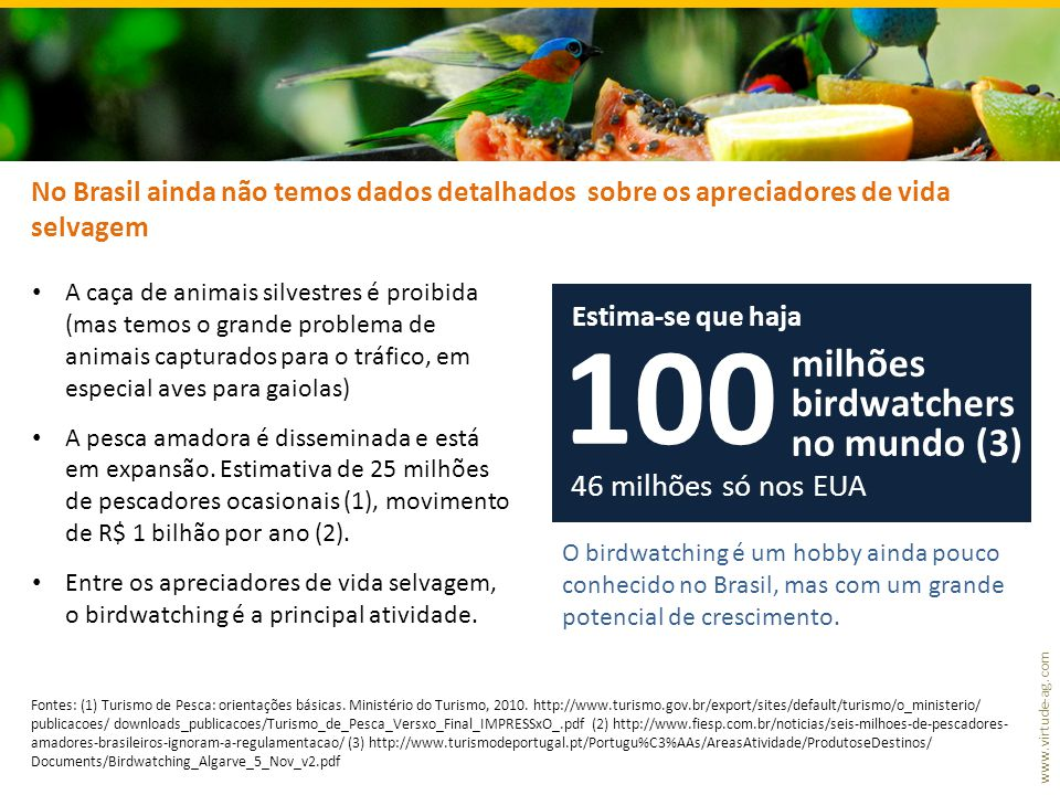 www.virtude-ag.com No Brasil ainda não temos dados detalhados sobre os apreciadores de vida selvagem • A caça de animais silvestres é proibida (mas temos o grande problema de animais capturados para o tráfico, em especial aves para gaiolas) • A pesca amadora é disseminada e está em expansão.