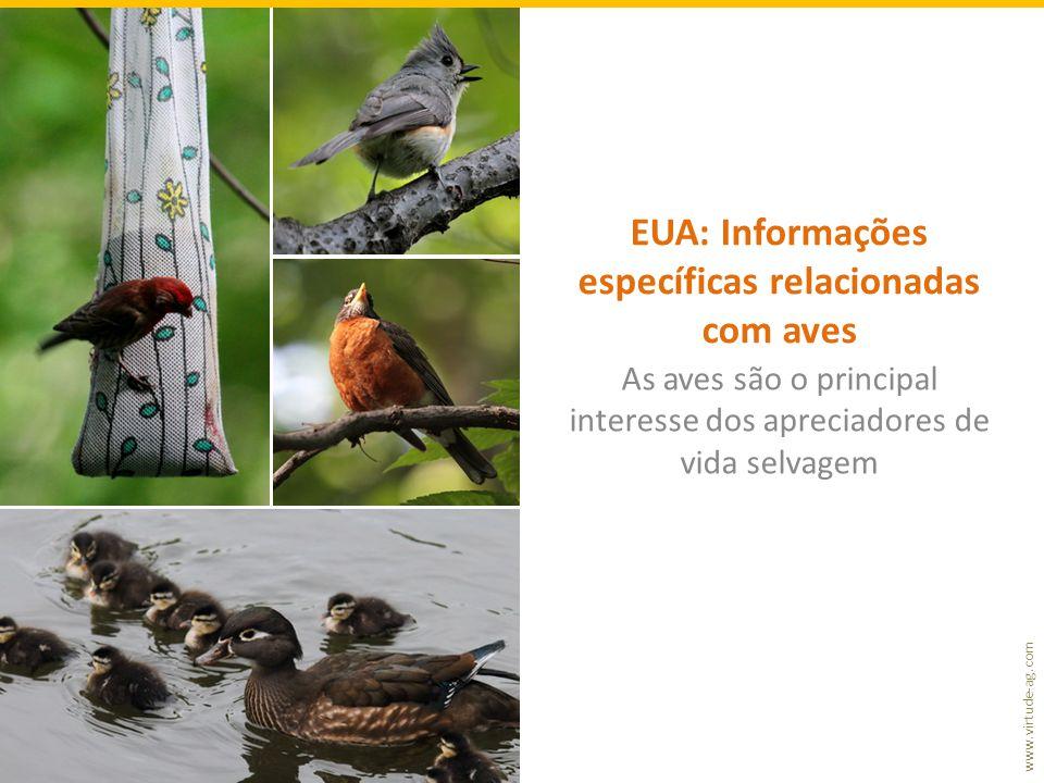 www.virtude-ag.com EUA: Informações específicas relacionadas com aves As aves são o principal interesse dos apreciadores de vida selvagem