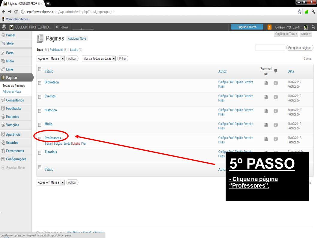 5º PASSO - Clique na página Professores .