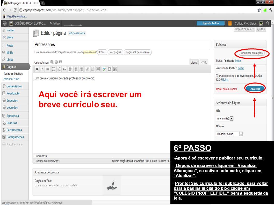 6º PASSO -Agora é só escrever e publicar seu currículo.