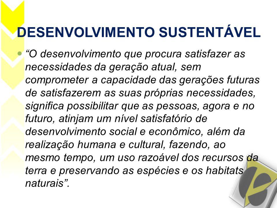 """DESENVOLVIMENTO SUSTENTÁVEL  """"O desenvolvimento que procura satisfazer as necessidades da geração atual, sem comprometer a capacidade das gerações fu"""