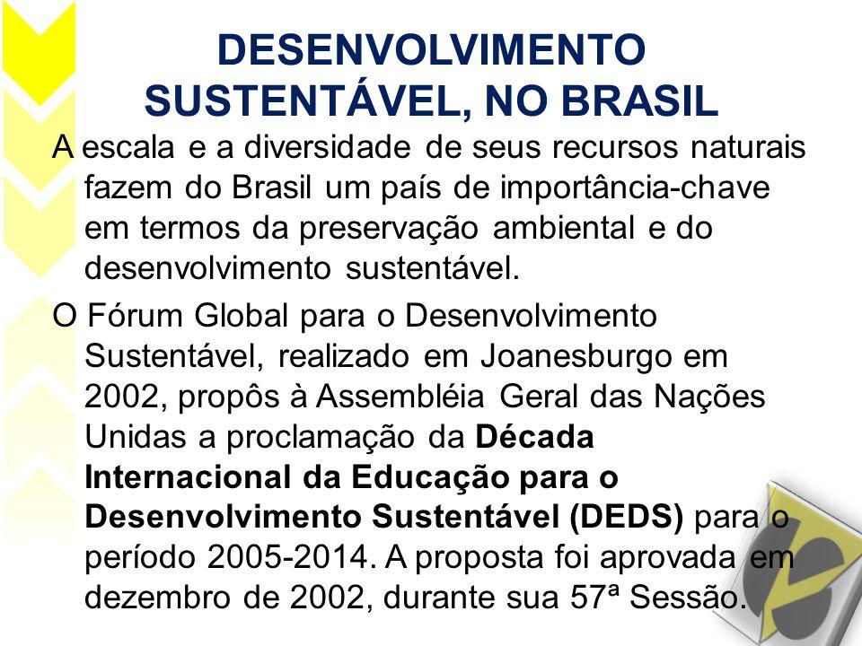 DESENVOLVIMENTO SUSTENTÁVEL, NO BRASIL A escala e a diversidade de seus recursos naturais fazem do Brasil um país de importância-chave em termos da pr